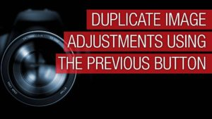 Duplicate Image Adjustments with the Previous button in Lightroom