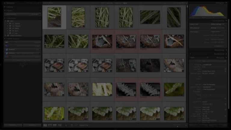 How to Use Lightroom 4 Collections to Better Organise your Photographs