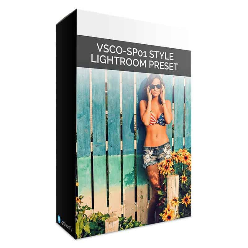 VSCO SP-01 Style Box Art